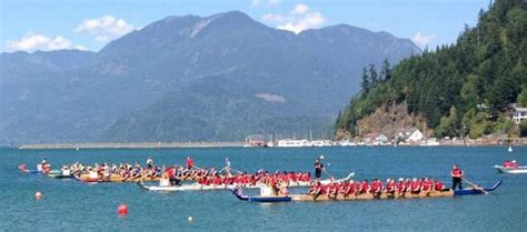 harrison dragon boat festival 2018 race grid harrison dragon boat regatta north shore dragon busters