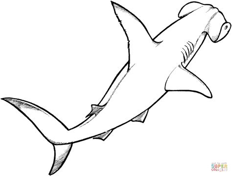 how to your coloring pages drawing shark coloring page 76 for your free coloring pages for with shark coloring page