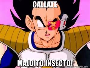 Memes De Vegeta - callate maldito insecto meme de su nivel vegeta memes
