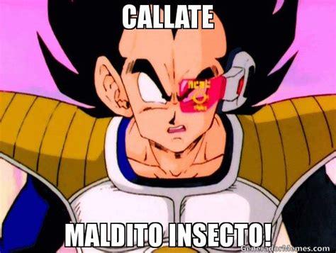 Memes De Vegeta - callate maldito insecto meme su nivel vegeta