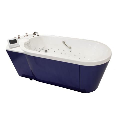 hydrotherapy bathtubs magellan multifunctional bath tub for hydrotherapy