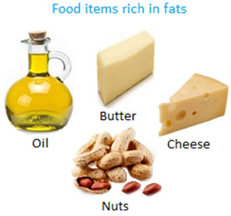 healthy fats rich foods foods rich in healthy fats healthy breakfast