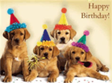 dogs singing happy birthday pet birthday ecards american greetings