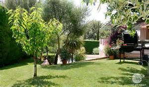 comment planter un arbre fruitier jardinerie
