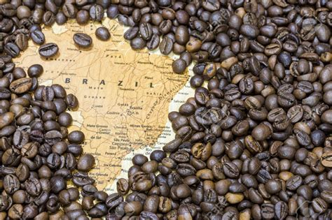 Exporters of Brazil Roasted Coffee