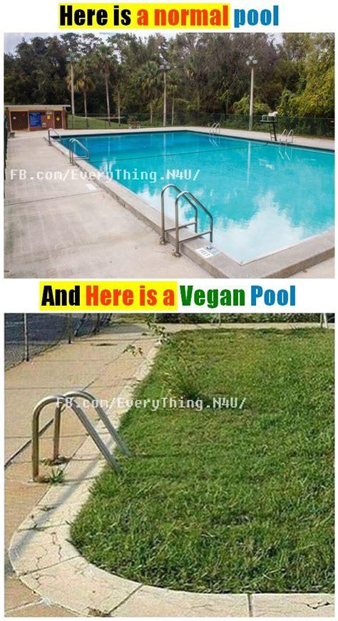 Pool Meme - the best pool memes memedroid