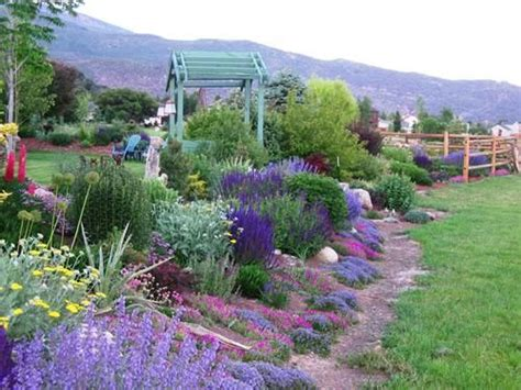 colorado backyard landscaping ideas 12 best images about colorado landscaping ideas on