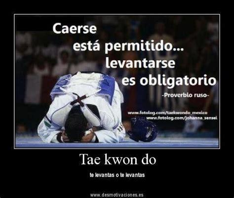 imagenes motivadoras de karate frases de taekwondo con im 225 genes aranchataekwondista