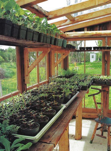 backyard greenhouse backyard greenhouse greenhouse