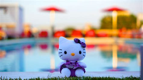 theme hotel hacked version hello kitty at sunset 13020 flickr photo sharing
