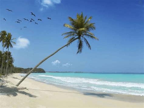 open a cayman islands bank account cayman islands bank account