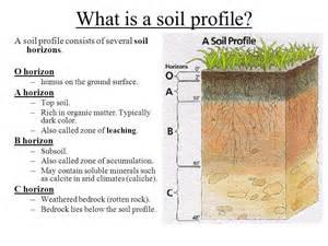 soils sustain life