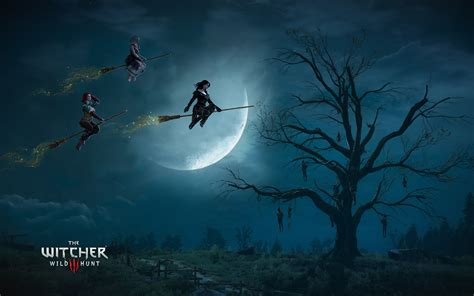 wallpaper hd 1920x1080 the witcher 3 wild hunt the witcher 3 wild hunt witches wallpapers hd wallpapers