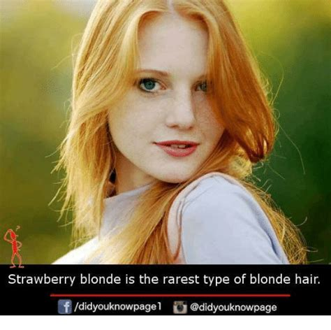 Blonde Meme - funny strawberry memes of 2017 on me me strawberries