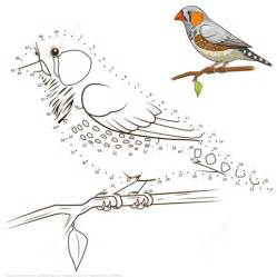 zebra finch coloring page zebra finch bird dot to dot free printable coloring pages