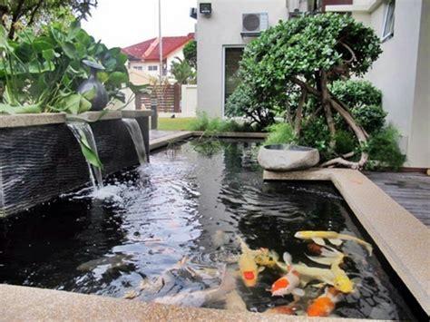 Pompa Aquarium Kolam Mini membuat kolam koi sendiri dunia air