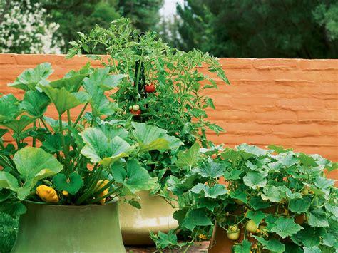 How To Grow Vegetables In Pots Sunset Magazine Vegetable Garden Pots