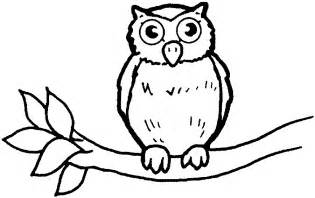 pictures of owls to color baby owls coloring sheet to print