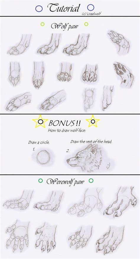 werewolf paw tutorial 17 best images about drawing on pinterest wolves tribal