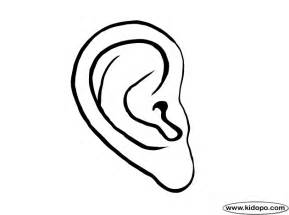ear coloring page right ear coloring page