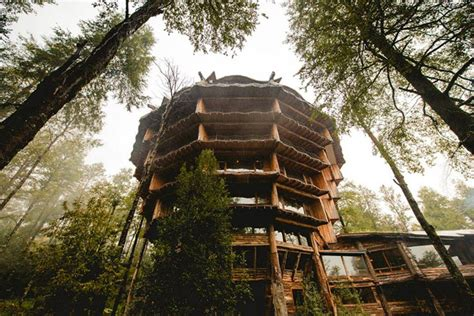 tree house hotel tree house hotel in chile nothofagus hotel spa tree house maptree house map