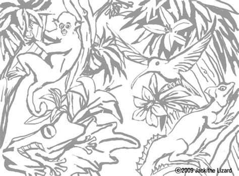 posts related to tropical rainforest coloring pages