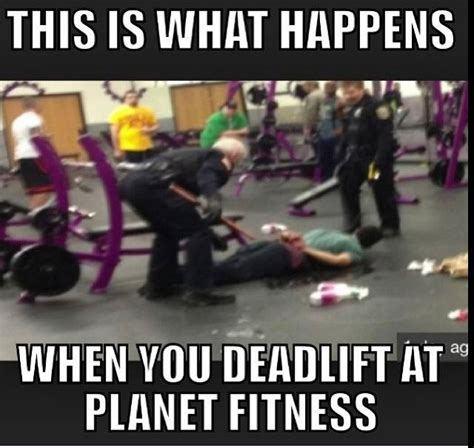 Gym Flow Meme - i didn t even grunt http absextreme com gym memes i