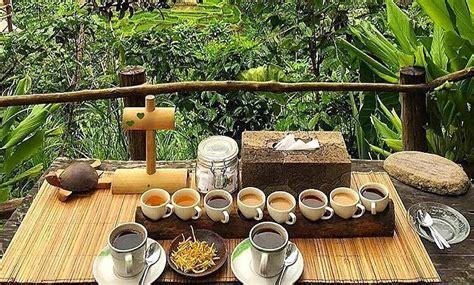 Coffee Bean Di Bali civet and luwak coffee revealed at bali pulina trip101