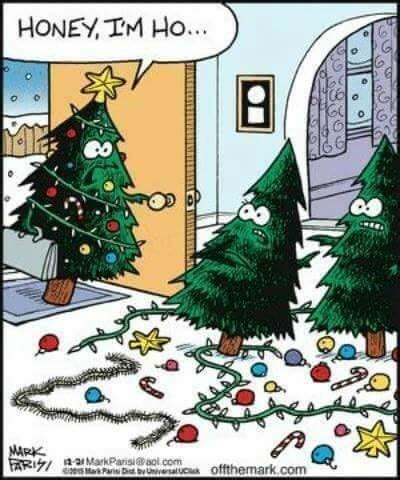 christmas trees with decorations on floor funny