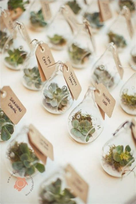 decoration wedding favours 25 best ideas about succulent wedding favors on