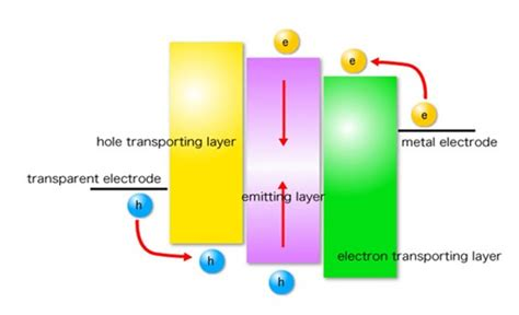 what is a polymer light emitting diode polymer light emitting diodes images