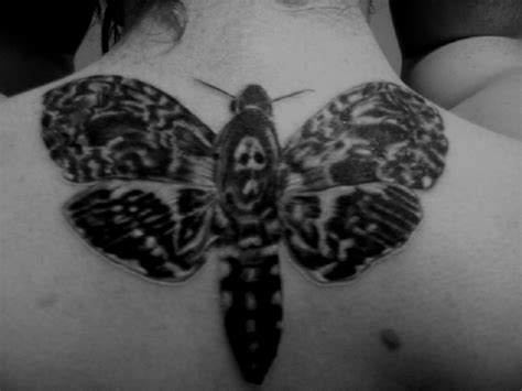 death s head moth tattoo by fluid1000 on deviantart