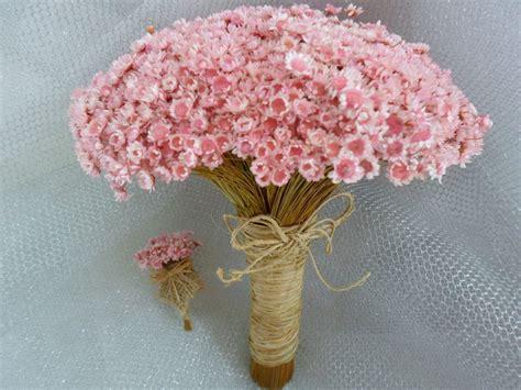imagenes de rosas vivas buque de sempre vivas rosa ch 225 cabo em palha e la 231 o