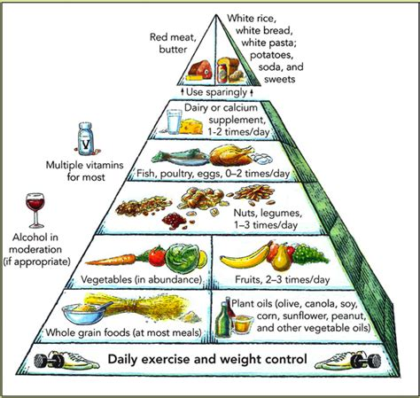 Mediterranean Style Rice - new usda food plate pyramid replacement cartoon