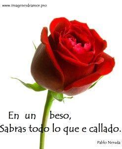 imagenes de rosas con poemas 17 best images about rosas on pinterest te amo facebook