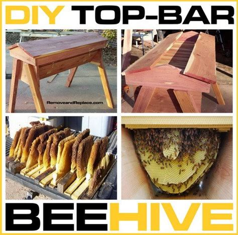 build top bar beehive how to build your own diy top bar beehive removeandreplace com