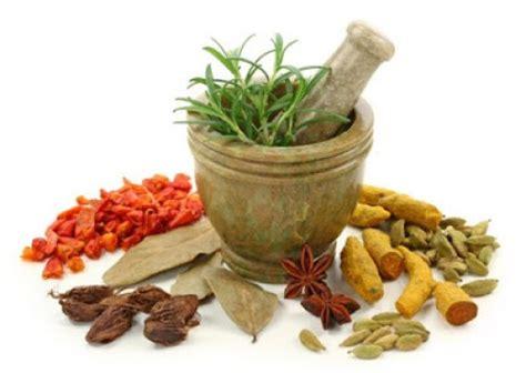 Obat Herbal Untuk Stamina Ayam 6 jamu kuat tahan lama yang bisa anda racik sendiri di rumah
