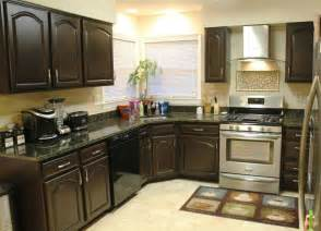 Painting Wood Kitchen Cabinets Ideas Redo Kitchen Cupboards Color Ideas Kitchen Designs