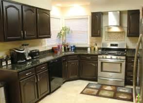 Paint Wooden Kitchen Cabinets Redo Kitchen Cupboards Color Ideas Kitchen Designs