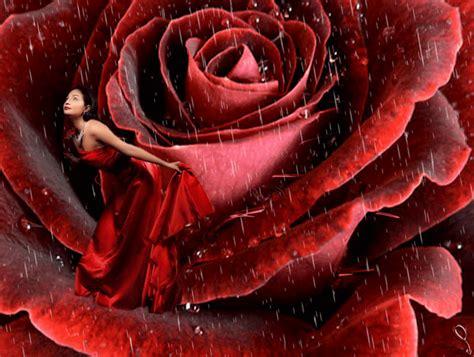 bonitas imagenes gif de flores y lluvia gifs hermosos cosas hermosas encontradas en la web