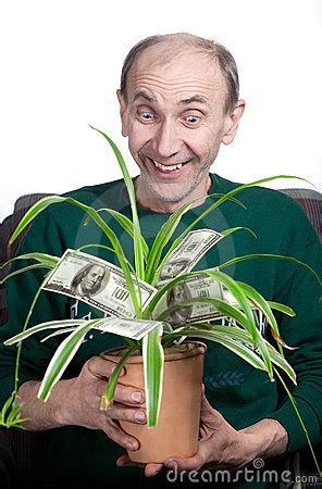 man holding money plant royalty  stock images