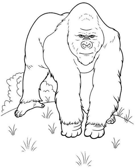 goodnight gorilla coloring page goodnight gorilla coloring pages diannedonnelly com