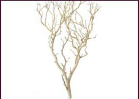 decorative branches with beads wholesale decorative branches manzanita and botanical