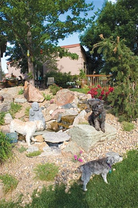 landscaping ideas for backyard with dogs 17 best images about pet friendly landscape on pinterest