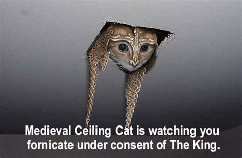 Ceiling Cat Meme - image 8104 ceiling cat know your meme