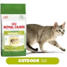 Royal Canin Outdoor 30 1794 by Royal Canin Chat Le Dogstore Fr