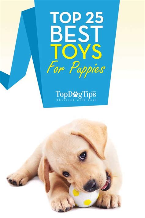 best puppy toys top 25 best puppy toys for dogs that chew a lot top tips
