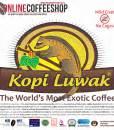 Kopi Arabica Gayo Luwak kopi luwak gayo highland organic arabica coffee beans coffee shop