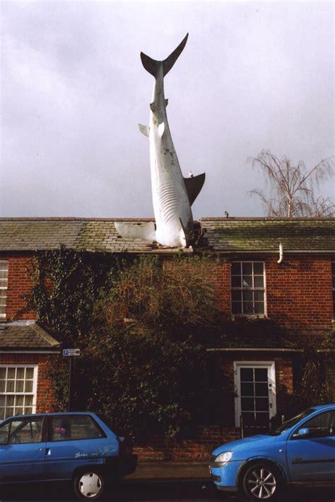 shark house the headington shark wikipedia