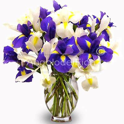 co d fiori bouquet di iris bianchi e ordina con consegna